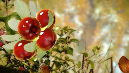 Spicy berries.