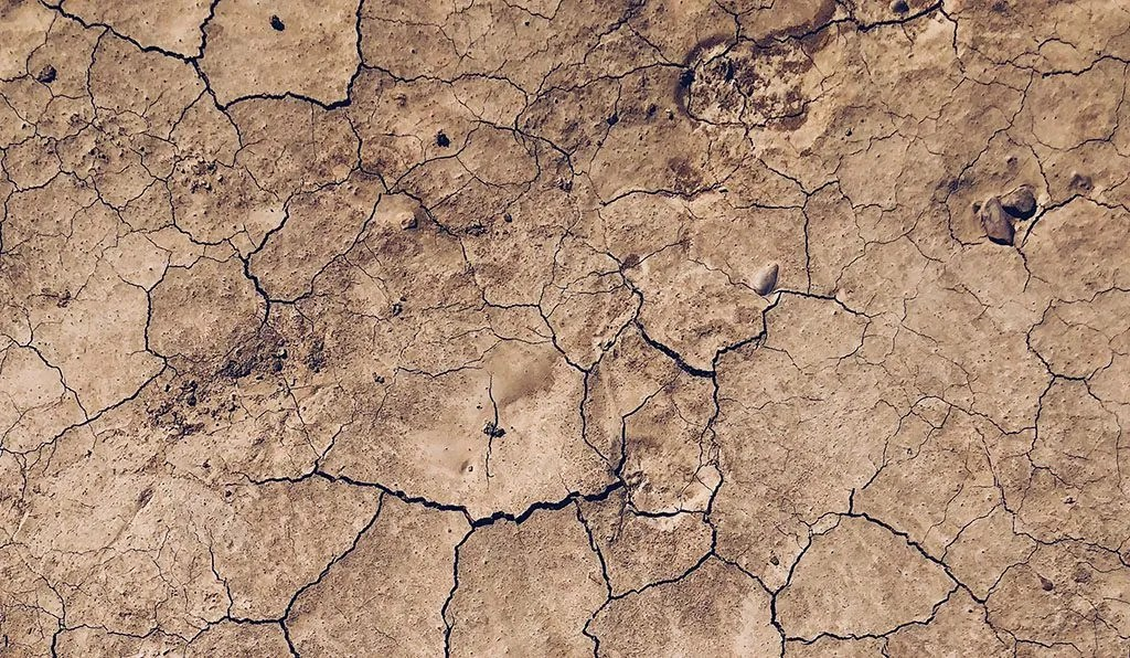 SHORT STORY | A Parable of The Sky and The Soil by Evelyn Philip