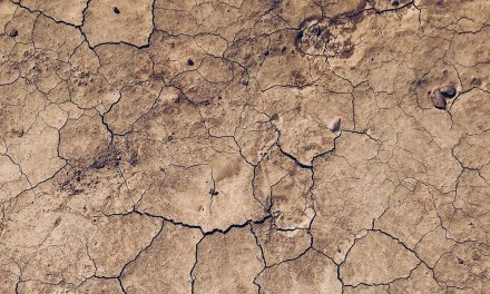 SHORT STORY   A Parable of The Sky and The Soil by Evelyn Philip