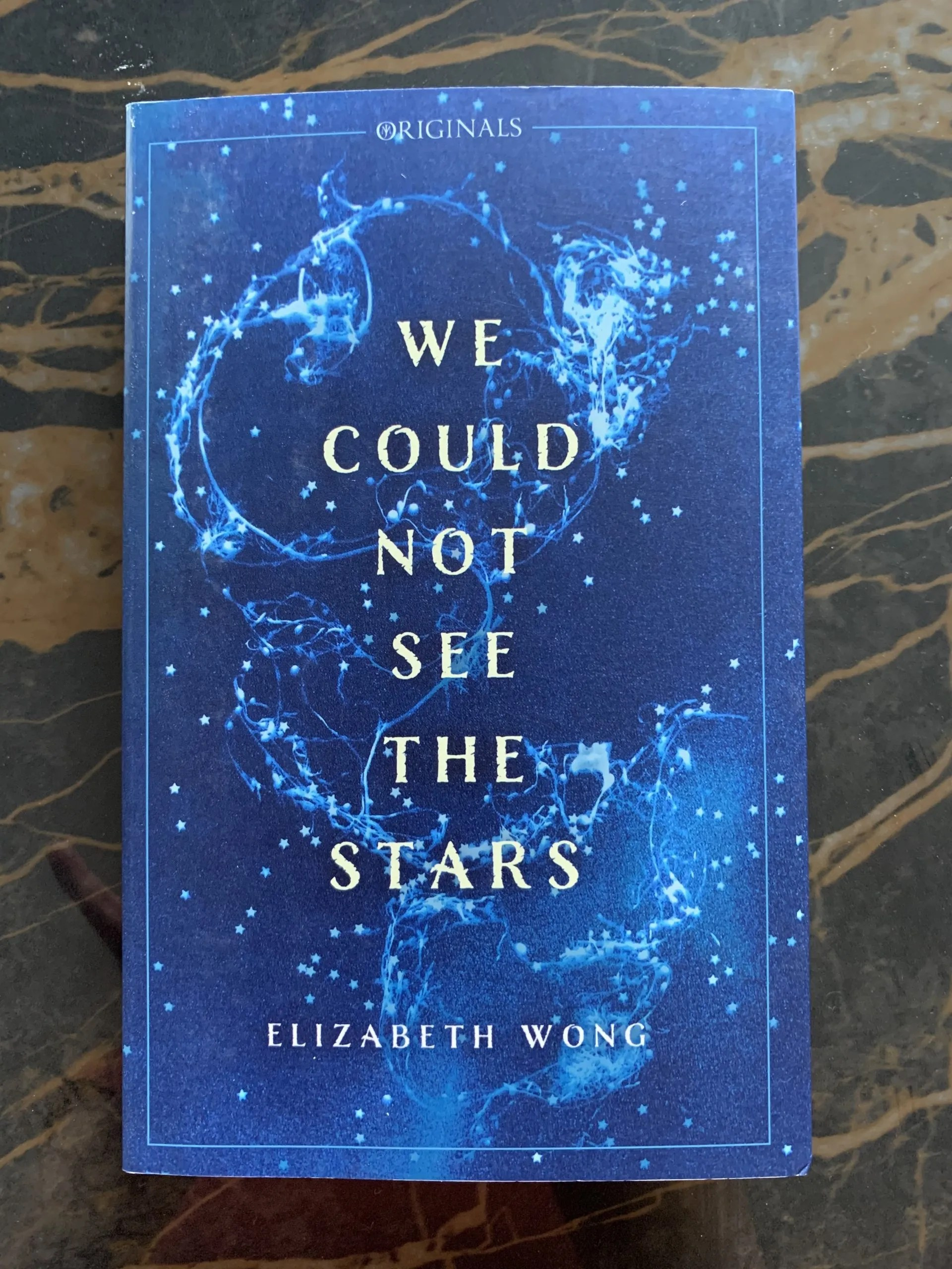 We Could Not See The Stars is a first novel by Elizabeth Wong