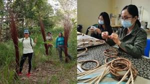 Tradisi Warisan Anyaman Buluh Salingkawang Punca Nafkah 30 Wanita Sabah