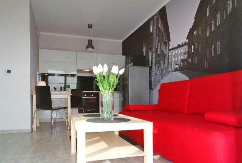 na zdjęciu luksusowe wnętrze w apartamencie do wynajęcia w Katowicach