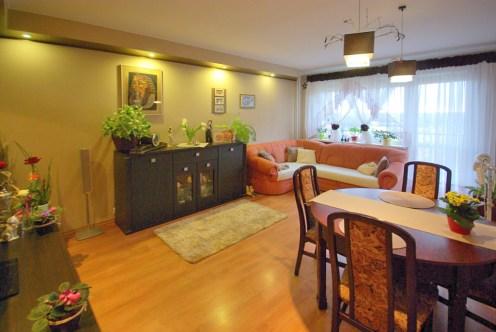 na zdjęciu luksusowy salon w ekskluzywnym apartamencie do sprzedaży w okolicy Legnicy