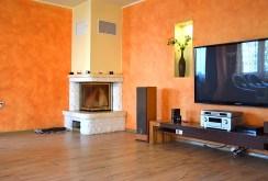 na zdjęciu kominek oraz sprzęt RTV w salonie willi do sprzedaży w Legnicy