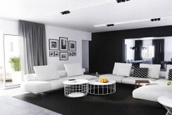 luksusowy salon w ekskluzywnej willi do sprzedaży w okolicach Katowic