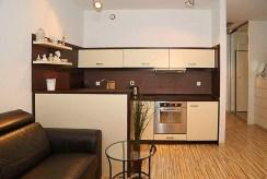 na zdjęciu nowocześnie umeblowana i urządzona kuchnia w luksusowym apartamencie w Katowicach na sprzedaż