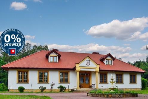 reprezentacyjne wejście do ekskluzywnej willi w okolicach Bolesławca na sprzedaż