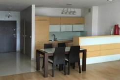 aneks kuchenny w luksusowym apartamencie w Katowicach na sprzedaż