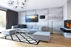 widok na nowoczesny salon w ekskluzywnej willi do sprzedaży Mazury