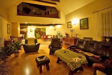 komfortowy salon w ekskluzywnej willi do sprzedaży Piotrków Trybunalski