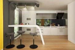 nowoczesna kuchnia w luksusowej willi na sprzedaż Kalisz