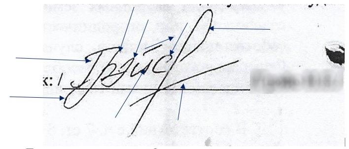 Фото №2. Заключение экспертизы подписи на документе