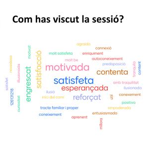 Valoració final de la sessió de speed dating laboral al si del projecte Competlab del SOM Mataró - Ajuntament de Mataró