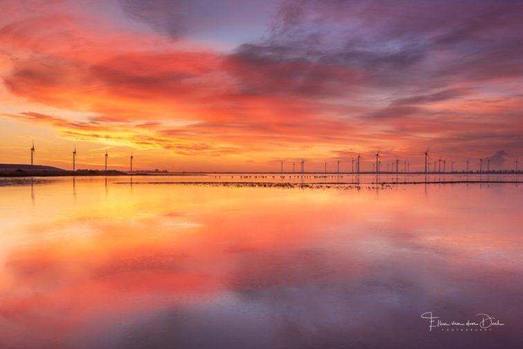 Een kleurrijke zonsopkomst boven de Grevelingen