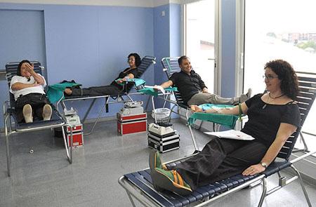 Donación médula ósea