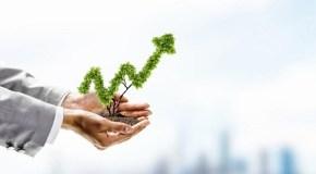 Fondos de inversión: cómo sacarle rentabilidad a tus ahorros