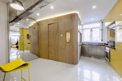 the-apartment-entrance-and-adjacent-storage-are-clad-in-a-mirrored-finish-to-make-the-light-filled-home-appear-more-spacious