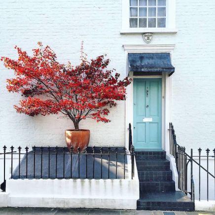 colorful-front-doors-photography-london-bella-foxwell-75-5c36fa737029b__700