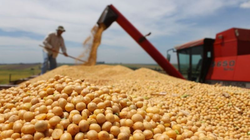 Argentina está en el tercer puesto en el ranking de exportaciones de alimentos
