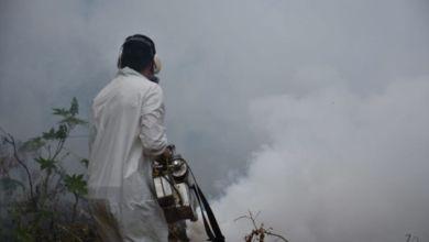 Photo of Dengue: estrategias para su erradicación