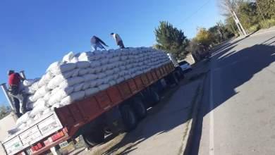 Photo of Celebran que hijo del intendente exportó nueces con la infraestructura del Estado