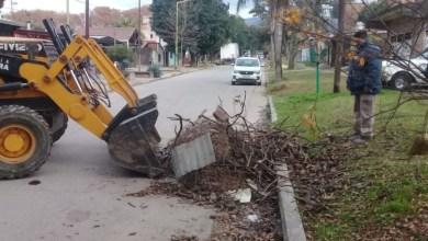 Photo of Trabajos de limpieza en Tafí Viejo