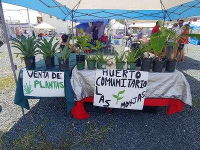 Mercado Agroartesanal