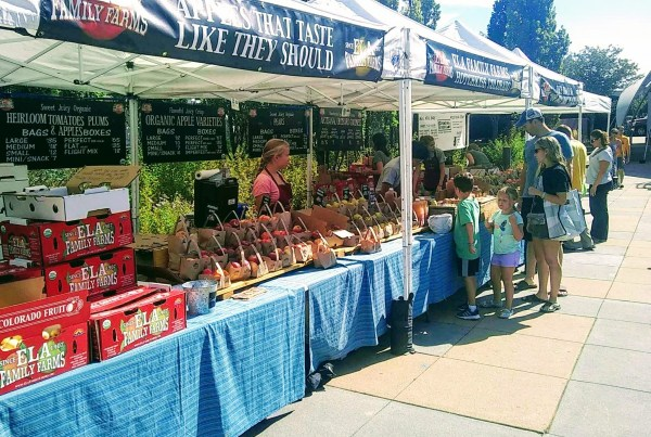 stapleton farmers market