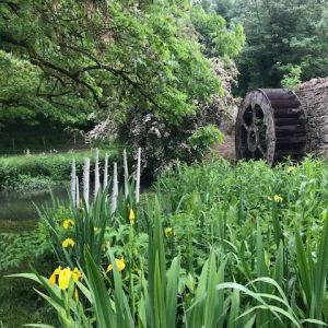 Tree sculpture installation by Elaine Bolt