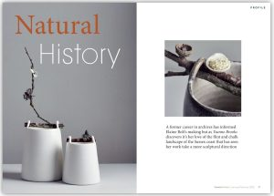 Elaine Bolt Natural History Ceramic Review Article