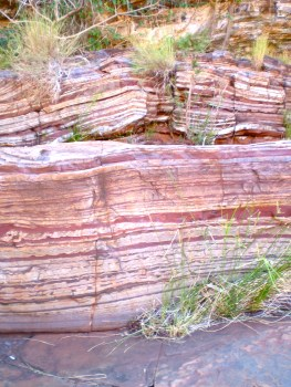 Ancient rocks, Banded Iron Formation on the floor of Dales Gorge, Karijini National Park in the Pilbara Western Australia