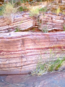 Banded Iron Formation seen in Dales Gorge beside the path at the bottom of the gorge.