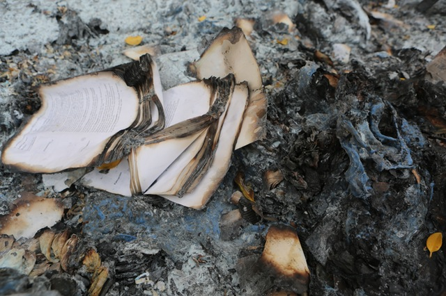 book-book-pages-burned-pages