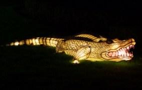 Longleat croc