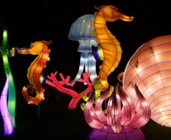 Longleat seahorses