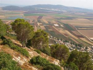 Gospel Trail - Mount Tabor, Galilee Photo by Tal Glick http://www.goisrael.com