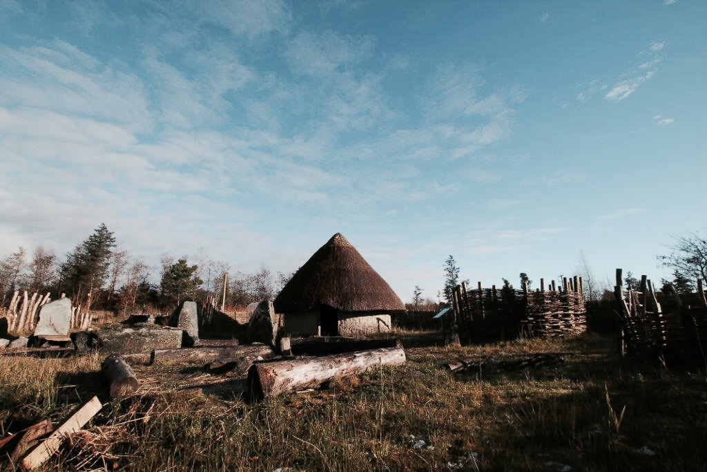 elainesrovesntroves-an-creagan-bronze-age-settlement-site