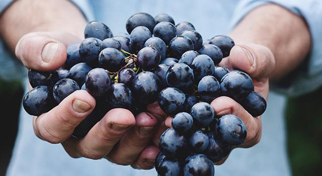 5 Alimente bune pentru sănătatea ta în fiecare zi 12