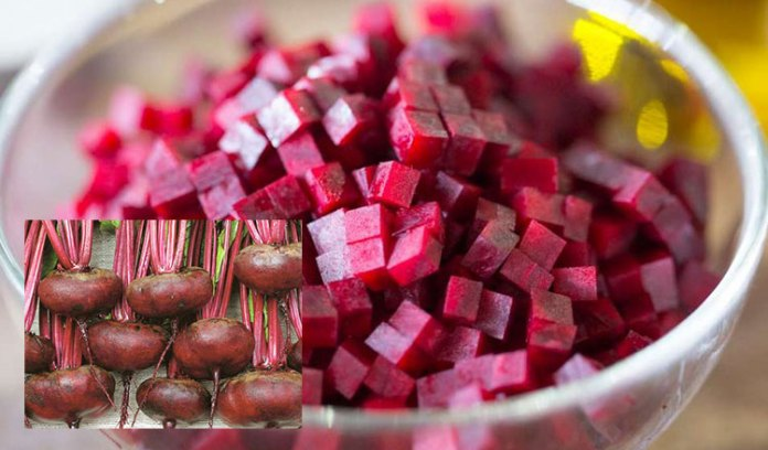 sfecla roșie -7 beneficii pentru sănătate