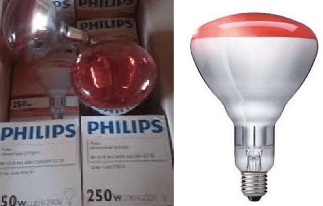Lampă cu infraroșii cu un singur bec:beneficii pentru sănătate 1