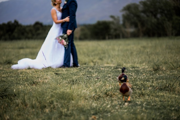 Overberg Wedding Photographer-2055