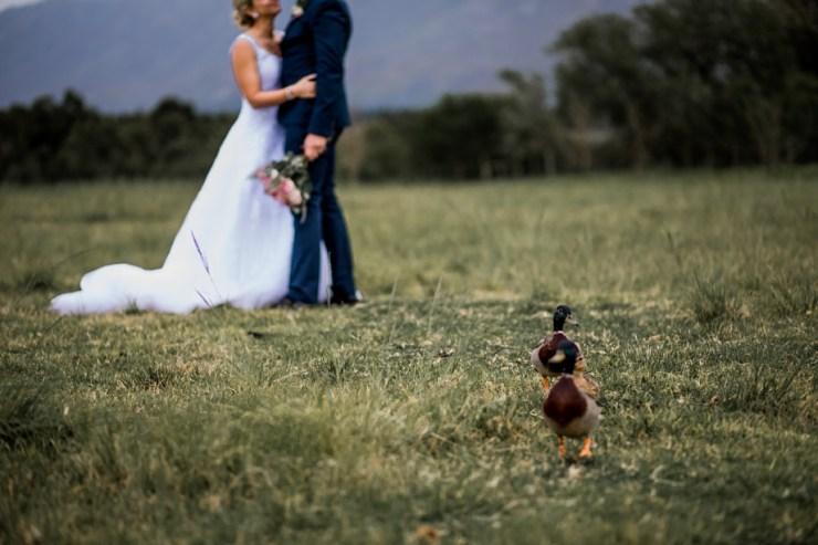 Overberg Wedding Photographer-2055