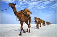 Expedición Danakil