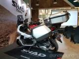 Shad-Terra06