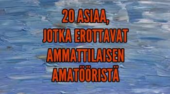 AMMATTILAINEN