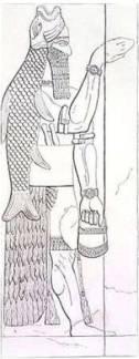 f21c7-nimrod_pontifice