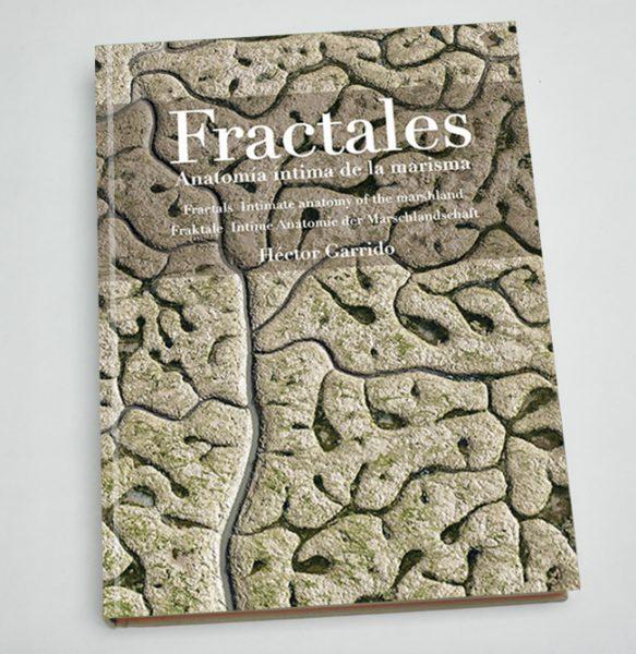 Portada del libro 'Fractales' de Héctor Garrido.
