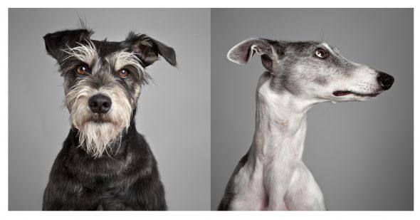 Fotografías número 5 (izquierda) y número 21 de la serie 'Soy tú' de Amparo Garrido.