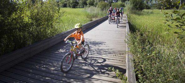 La ciudad piensa en el futuro, abordando planes que aseguren el crecimiento sostenible. Foto: VGreencapital2012