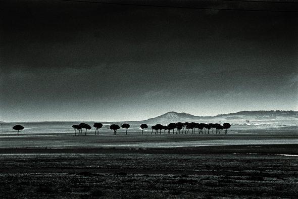 Fotografía de la serie Paisajes negros (1957-2007) de Alberto Schommer.
